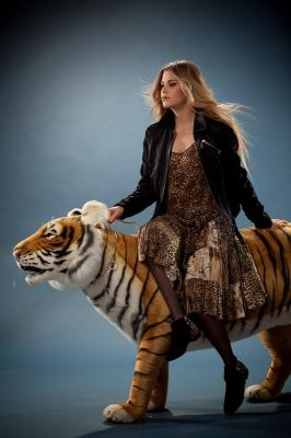 Tigre du bengale (