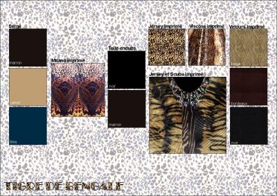 tigre-du-bengale-0