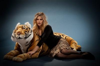 tigre-du-bengale-8