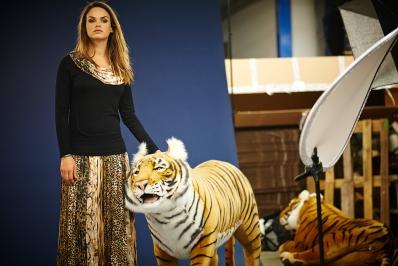 tigre-du-bengale